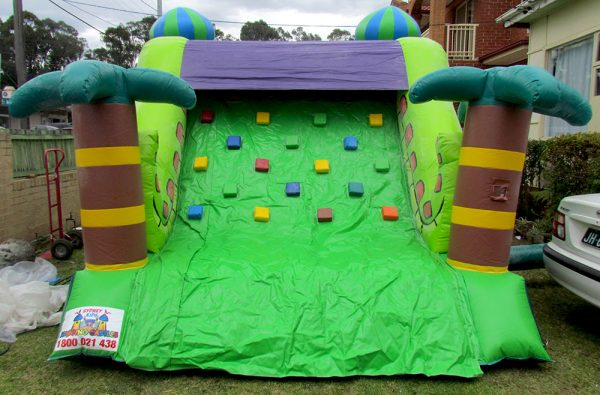 Twin Snake Slide Jumping Castle